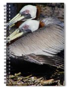 On Their Nest Spiral Notebook