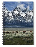 On To Greener Pastures Spiral Notebook