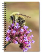 On Top Of The World - Bee Style Spiral Notebook