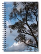 On Winds Of Evening Spiral Notebook