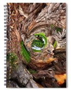 Once A Tree Spiral Notebook