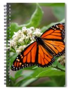 Once Upon A Butterfly 001 Spiral Notebook