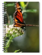 Once Upon A Butterfly 006 Spiral Notebook