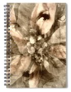 Once Upon Grandmom's Poinsettia Spiral Notebook