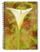 One Arum Lily Spiral Notebook