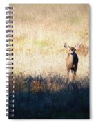 One Cute Deer Spiral Notebook