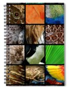 One Day At The Zoo Spiral Notebook