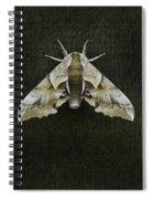 One Eyed Sphinx Moth Spiral Notebook