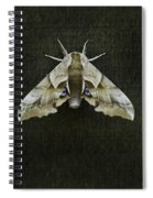 One Eyed Sphinx Moth Spiral Notebook