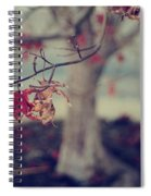 One Last Kiss Spiral Notebook