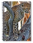 One Little Cheetah Sitting In A Tree Spiral Notebook