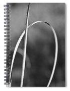 One Note Spiral Notebook