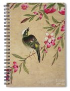 One Of A Series Of Paintings Of Birds And Fruit, Late 19th Century Spiral Notebook