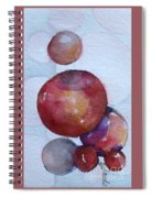 One Of The Five Shapes Spiral Notebook