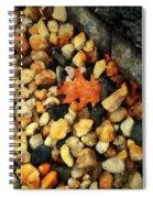 One Orange Leaf Spiral Notebook