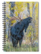 One Proud Bull Moose Spiral Notebook