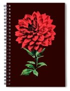 One Red Dahlia Spiral Notebook