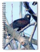 One That Got Away  Spiral Notebook