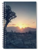 One Tree And Sunset Spiral Notebook