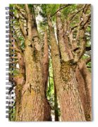 One Tree Six Trunks Spiral Notebook