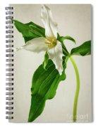 One Trillium Spiral Notebook