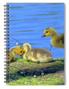 One Up Two Down Spiral Notebook