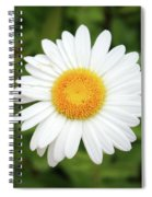 One White Daisy Spiral Notebook