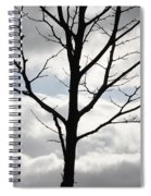 One Winter Tree With Clouds Spiral Notebook