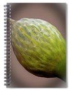 Onion Flower Macro Spiral Notebook