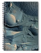 Onion Root Tip Cell, Freeze Fracture Tem Spiral Notebook