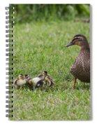 Onlooker Spiral Notebook