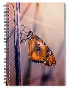 Only Beauty Remains Spiral Notebook
