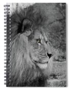 Onyo #17 Black And White  T O C Spiral Notebook