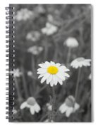 Oopsy Daisy Spiral Notebook
