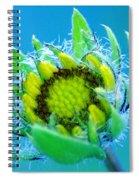 Open Mind And Open Heart Spiral Notebook