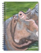 Open Mouthed Hippo On Wood Spiral Notebook