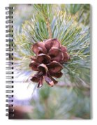 Open Pine Cone Spiral Notebook