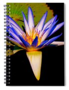 Open To The Sun Spiral Notebook