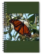Opened Wings  Spiral Notebook