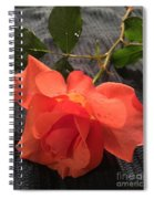 Opened Rose  Spiral Notebook