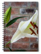 Opening White Lily Spiral Notebook