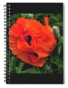 Opium  Spiral Notebook