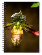 Oprah's Orchid Spiral Notebook