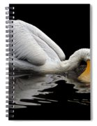 Oral Hygiene Spiral Notebook