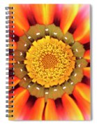 Orange African Daisy Spiral Notebook