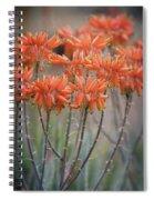 Orange Aloe  Spiral Notebook