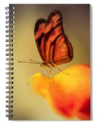 Orange And Black Butterfly Sitting On The Yellow Petal Spiral Notebook