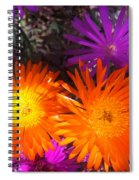 Orange And Fuchsia Color Flowers Spiral Notebook