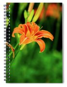 Orange And Green Spiral Notebook