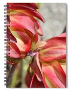 Orange And Light Green Flowers Spiral Notebook